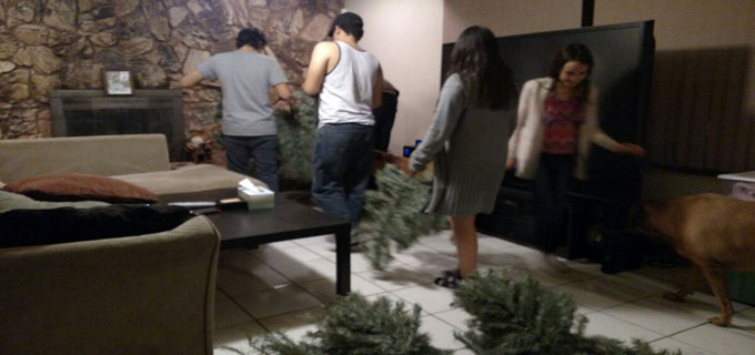 Putting Tree Up