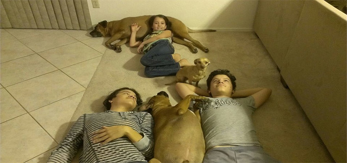 Relaxing with the doggies